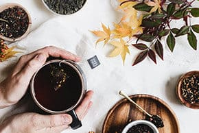 The Beginner's Guide to Loose Leaf Tea