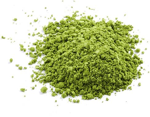 Matcha Photo Ingredients